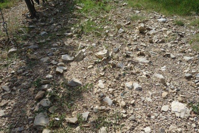 rocky soils