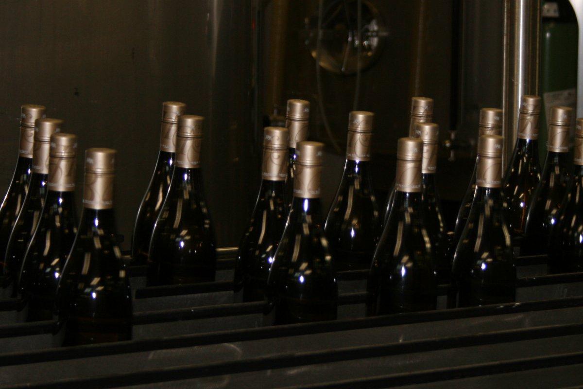 bottling line 5