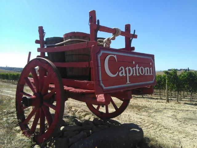 Capitoni cart 2