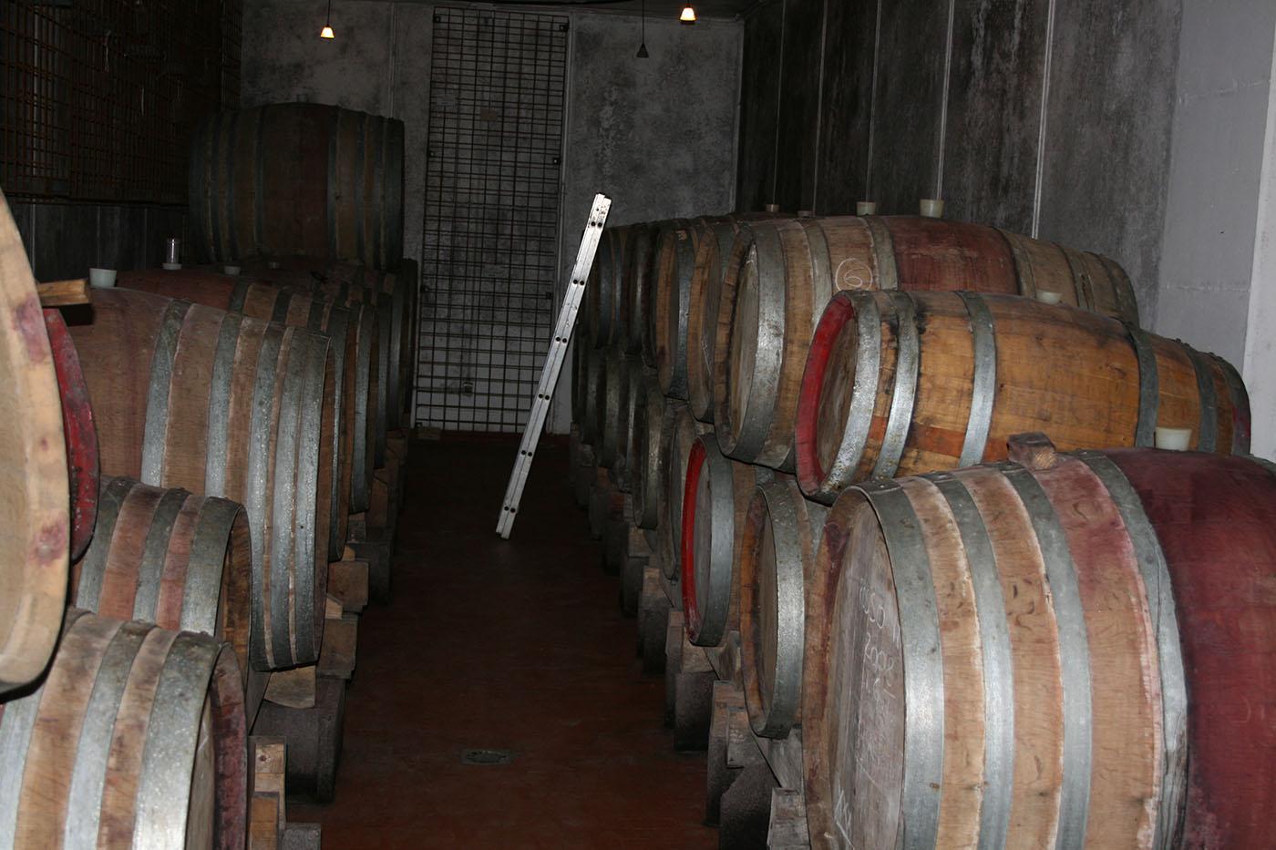 barriques at Massa Vecchia
