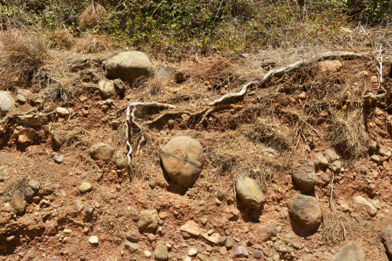 soil profile