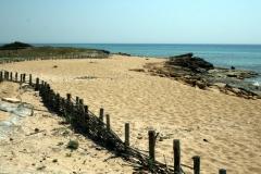 seaside near Manduria