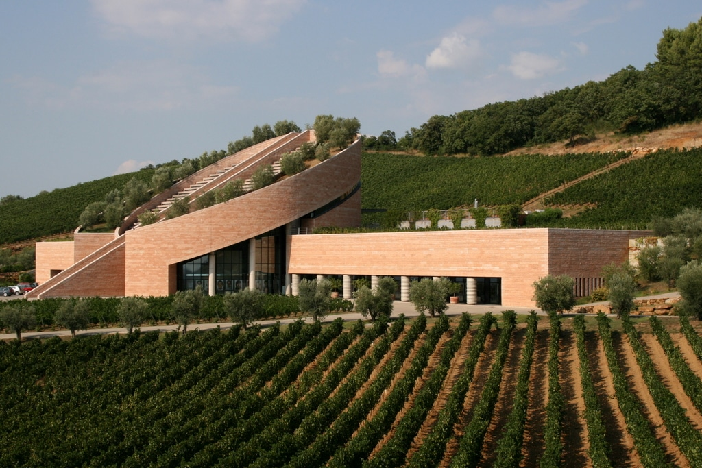 The new Maremma: Petra winery, Suvereto