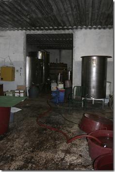 Montebelli working space